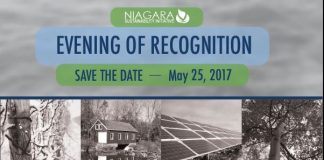 nsi evening of recognition